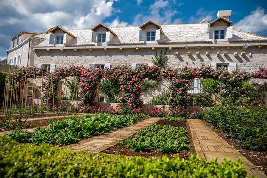 Garten vom Hotel Lemongarden