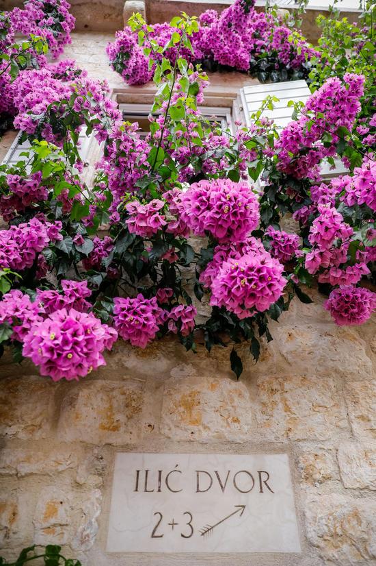 Blumenpracht im Hotel Lemongarden